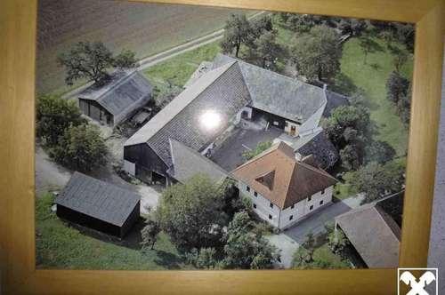 Ehem. Bauernhof in wunderschöner Lage - Donaublick