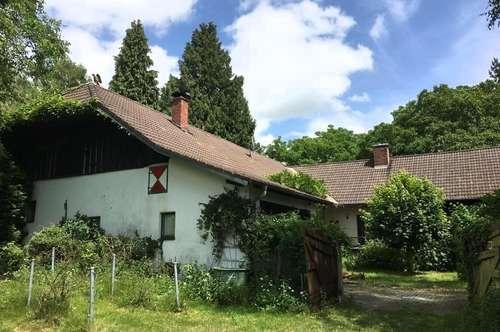 """Wohnhaus in Sölling - """"Kaufmannsgut"""""""