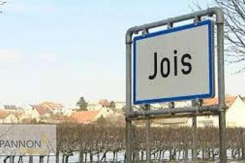 Jois - großzügiges Objekt mit viel Potential