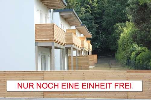 LETZTE EINHEIT - Bezugsfertige Doppelhaushälfte - Maria Anzbach