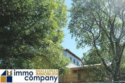 Wohnhaus bei Großpetersdorf auf großem Grund mit Obstbaumbeständen