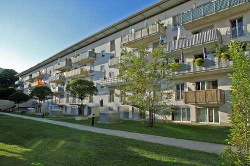 3-Zimmer-Wohnung in Miete