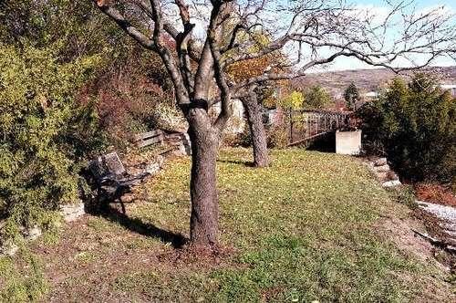 Sofort beziehbares Miethaus mit Garten in Krems