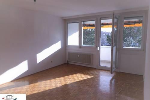 Geräumige 3-Zimmer-Wohnung mit Balkon, Nähe Schlosspark