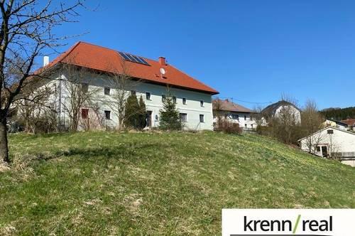 Bauernhof mit neuwertigen Dach -  zuzügl. 2 extra Bauparzellen (6 Einheiten)