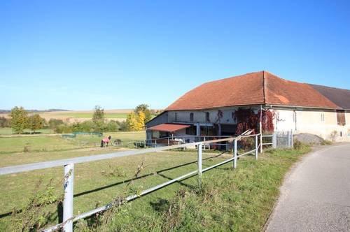 Pferdehof inkl. Möglichkeit eines Auszugshauses in 4691 Schlatt, Nähe Schwanenstadt