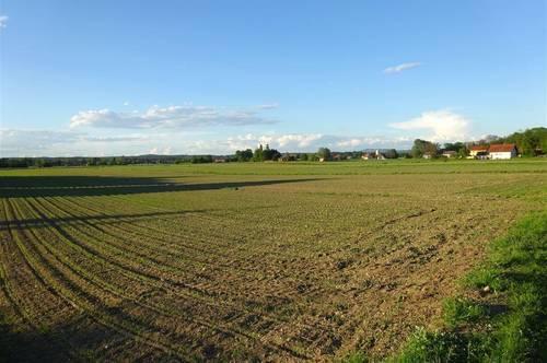 Der Traum für Pferdeliebhaber! 5100m² Bauland plus 1,62ha ebene Ackerfläche!