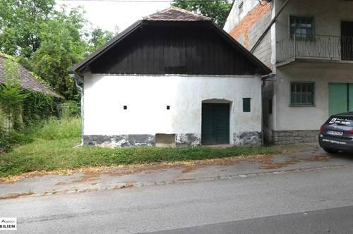 Gepflegtes Presshaus mit ca 30 Meter Kellerröhren