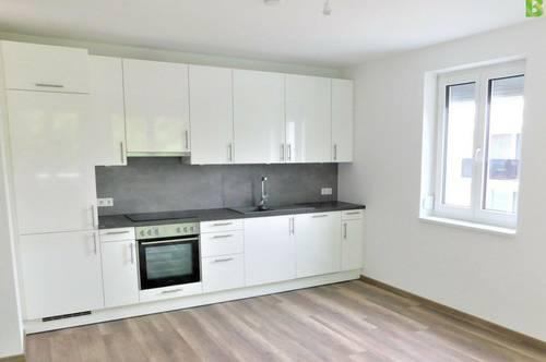 300/1/1V - VORSORGEWOHNUNG - Wohnung im Erdeschoss mit Garten und Küche in Michelhausen zu kaufen, Nähe Bhf Tullnerfeld