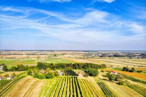 Heuriger mit Weingarten in der Weinidylle Südburgenland zu verkaufen