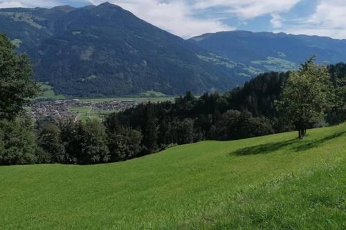 Zillertal: Wohnung in Panoramalage zu vermieten