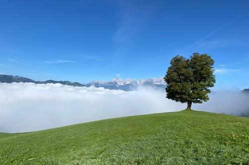 Objekt in Aufbereitung: neu errichtete Almhütte im Zillertal