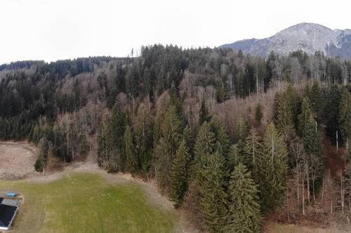 Angath: Baugrundstück mit Wald und Wiese zu verkaufen - reserviert!