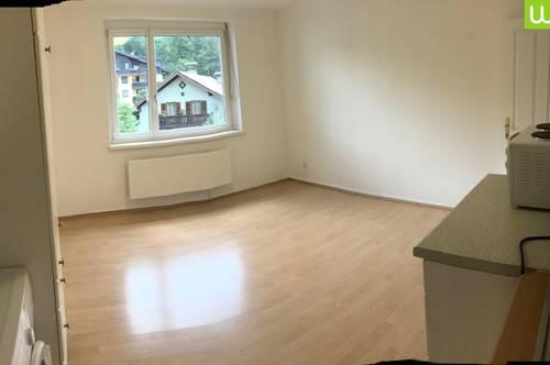 Garconniere-Apartment in Salzburg-Fürstenbrunn