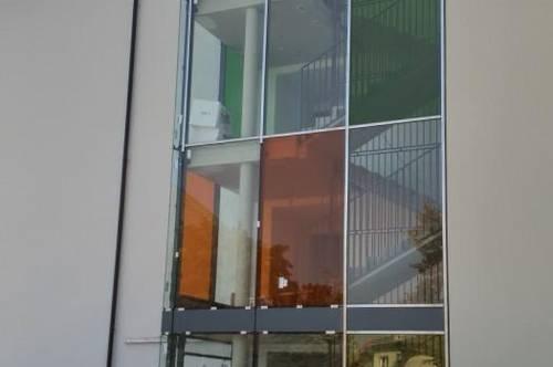 Neubau 3 Zimmerwohnung westseitig ( Stadthähe)