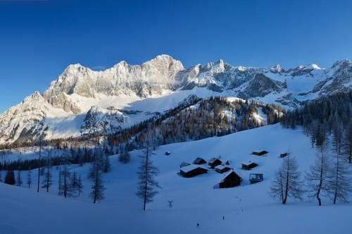 Alpen Apartments | 1-Zimmer Ferienwohnung im Skigebiet | Erstbezug | Provisionsfrei
