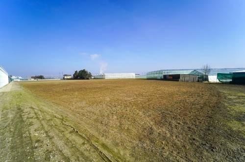 Landwirtschaftliches Grundstück in Wien Simmering - Landwirtschaft, Gartengestaltung etc. möglich