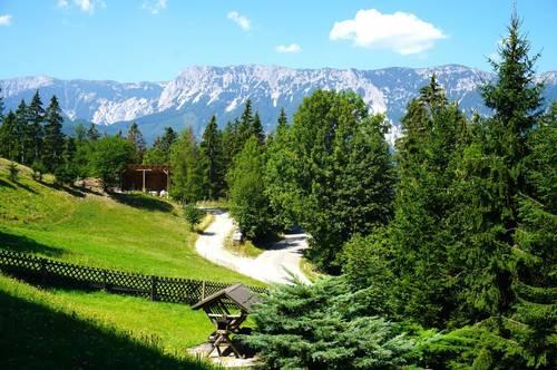 Märchenhafte Landhaus-Residenz in Reichenau an der Rax AB SOFORT zu verkaufen!