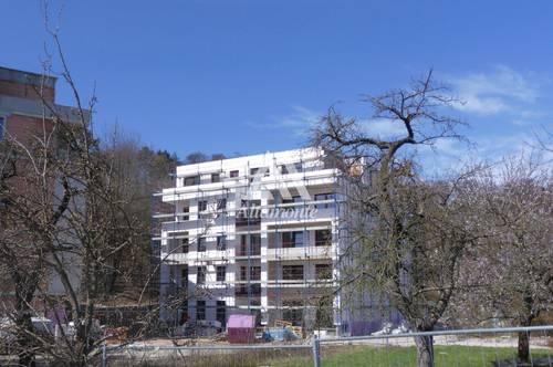 Genuß-Wohnung: Licht - Luft - Grün