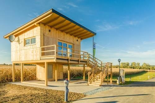 Holz-Seehaus LINUS VISTA samt Grundstück, wunderschöner Seeblick von der erhöhten Terrasse