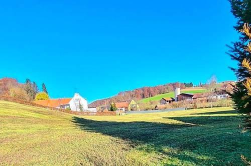 Baugrundstück Fehring-Johnsdorf
