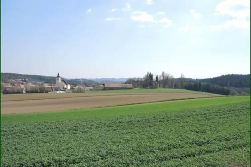 NEUE BAUPLÄTZE in Lichtenau