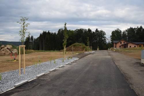 Neue Bauplätze Großreichenbach