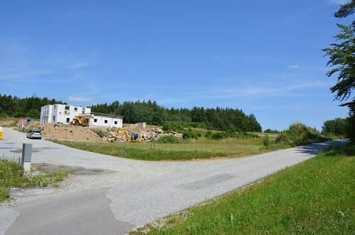 Siedlung in Etzen - Baugrund Parzellen Nr. 1067/2