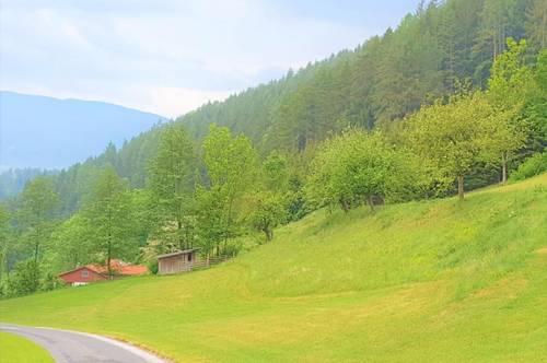 18 Hektar Waldfläche in 2880 Kirchberg am Wechsel