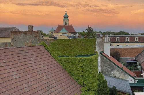 Über den Dächern von Laxenburg