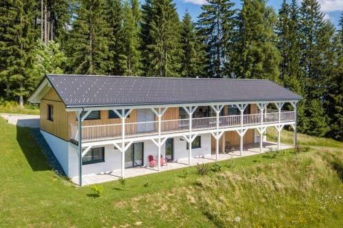 Traum-Aussicht in Komfort-Landhaus über Diex