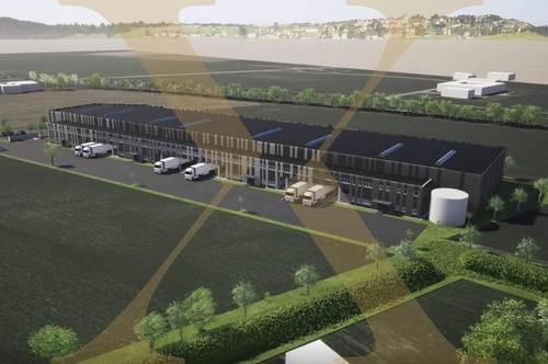 Planbare Gewerbeflächen - nach Mieterwunsch gestaltbar - in Wels Nord (Stadlhof - Halle 1) zu vermieten