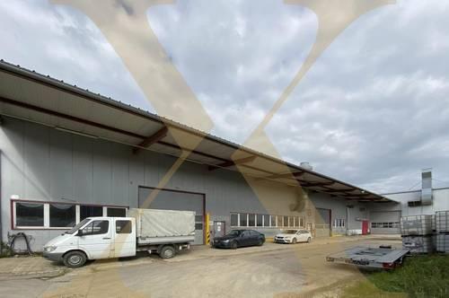 Beheizbare Lagerhalle mit ca. 7 bis 9 Meter Hallenhöhe, diversen Krananlagen, Freiflächen, eigener Tankstelle etc. in Asten zu vermieten!