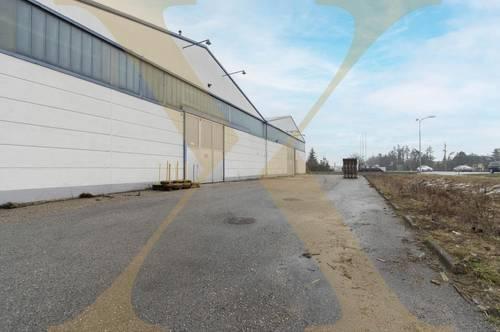 Beheizte Lagerflächen samt Büros und asphaltierter Freifläche in Marchtrenk zu vermieten!