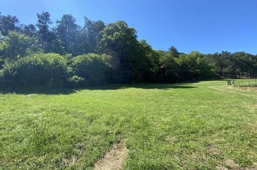 Grundstück mit Baubewilligung in absoluter Grün-Ruhelage
