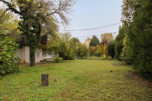 Seltene Gelegenheit: Gut bebaubares, voll aufgeschlossenes Grundstück im 22. Bezirk