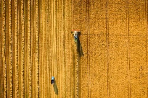 INVESTITION für die Zukunft - Land- und Forstwirtschaft bei Altmünster