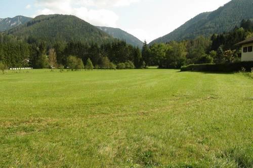 Luftkurort Schwarzau im Gebirge: Baugrundstück in Grünruhelage