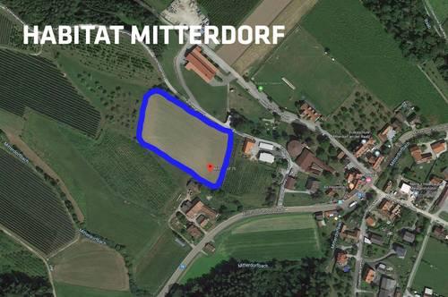 15 Grundstücke in Mitterdorf an der Raab. In unmittelbarer Nähe zu Graz, Weiz und Gleisdorf.