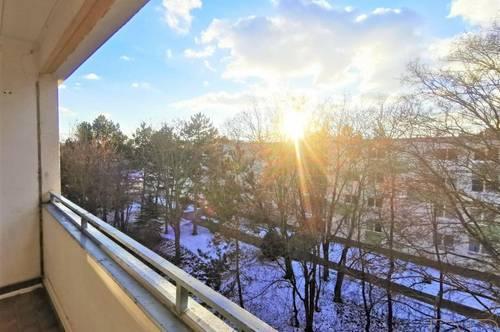 DB IMMOBILIEN | WARMMIETE !!! Großzügige 3-Zimmer Wohnung samt gemütlicher Loggia mit Blick ins Grüne !!!
