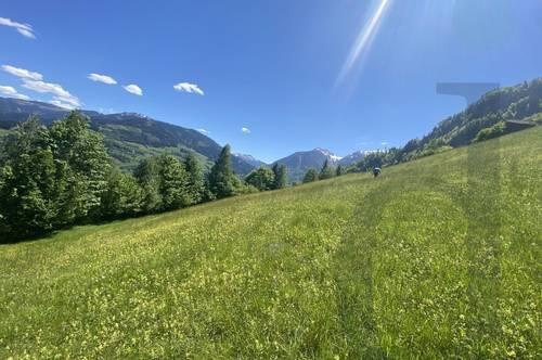 25.000 m² landwirtschaftliche Fläche zu verkaufen! Verkauf kann nur an Landwirte erfolgen!