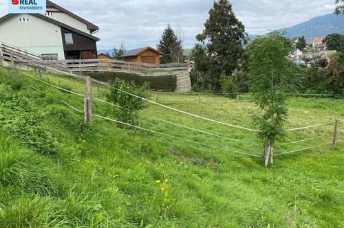 Unbebautes Grundstück in Ortsrandlage von Aichdorf, Nähe Zeltweg