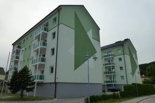 Nur 30 Autominuten bis zur Stadtgrenze Wien - wohnen im Grünen