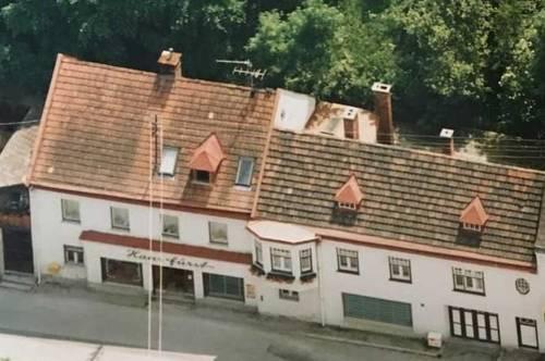 Großes Mehrfamilienhaus in Furth an der Triesting  mit 400m² Wohn/Nutzfläche
