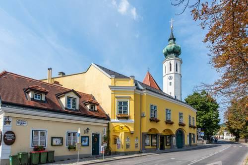 Gepflegtes Mehrfamilienhaus mit großem Südgarten mitten in Grinzing!