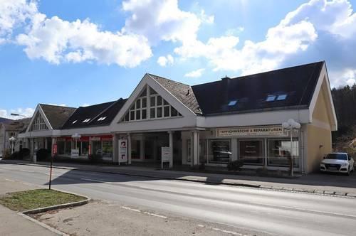 Mietwohnung in Zentrumslage - ERSTBEZUG