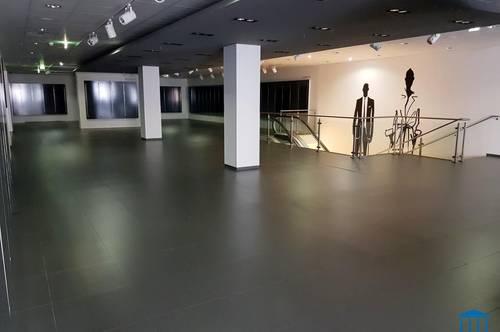 500 m² große Geschäfts-/ Lagerfläche - mit Lift und straßenseitiger Zufahrt!