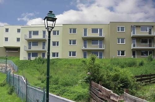 Steinakirchen/Forst. Bezugsfertig   Geförderte 3 Zimmer Mietwohnung   Balkon.