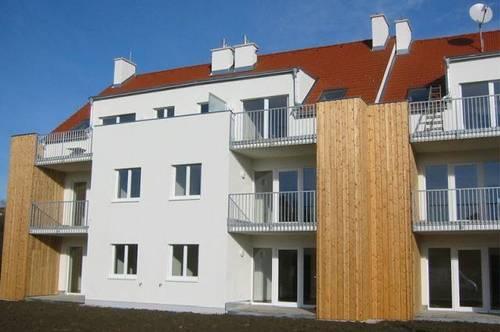Hohenwarth-Mühlbach. geförderte 2 Zimmer Wohnung   Dachterrasse   Miete mit Kaufrecht.