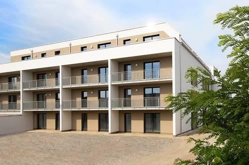 Wieselburg. Erstbezug Frühjahr 2021 | Geförderte 3 Zimmer Wohnung | Garten | Miete mit Kaufrecht.